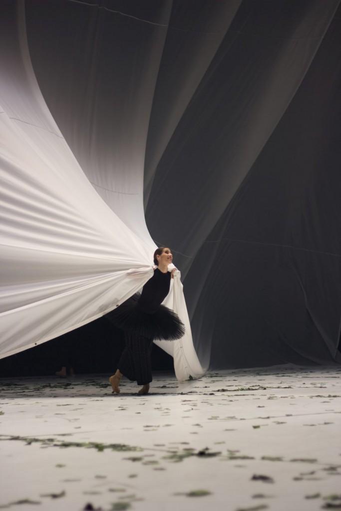 """9. S.Gileva, """"COW"""" by A.Ekman, Semperoper Ballet © T.M.Rives"""