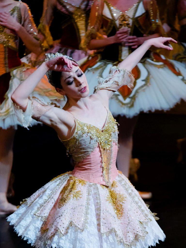 "12. M.Makhateli and ensemble, ""The Sleeping Beauty"" by P.Wright after M.Petipa, Dutch National Ballet 2017 © A.Kaftira"