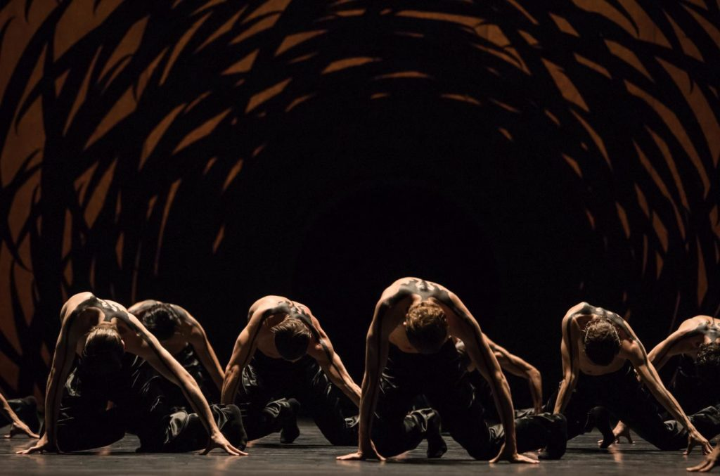 "7. Ensemble of Ballet Zurich and dancers of the Junior Company, ""Emergence"" by C.Pite, Ballet Zurich © G.Batardon"